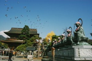 Selamat datang di kuil Zenko-ji. Salah satu kuil tercantik di Jepang. Kedatangan Anda akan disambut olehRokujizō (6Bodhisattvas), burung-burung yang berterbangan, dan Sanmon Gate.