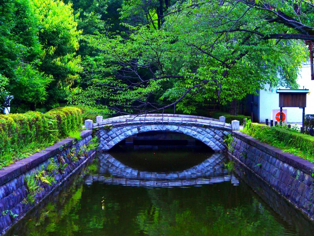 Peaceful bridge over the Koganei pond