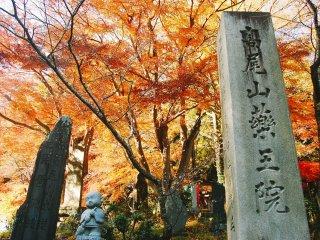 Prasasti dan patung-patung yang dihiasi oleh pemandangan dedaunan musim gugur di pinggir jalur pendakian di Gunung Takao/Takaosan.