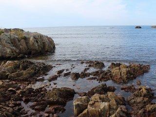 간만의 차가 커서 썰물 때에는 바위에 부착된 거북이 손이나 쟈쟈미 라고 불리는 식용 조개를 채취할 수 있다