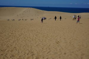 เนินทราย tottori แรกเห็นก่อนเดินก็อดคิดไม่ได้นะว่ามีแค่นี้เหรอ