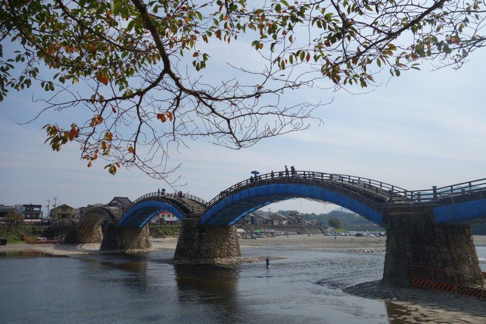 ใบไม้เริ่มเปลี่ยนสีที่สะพาน Kintaikyo