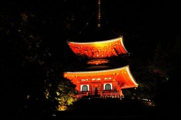 <p>주색빛의 2층 사찰탑이 밤하늘을 아름답게 수놓고 있다.</p>