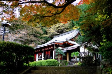 Autumn color at Sonsho-in