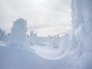 Os monstros de neve têm uma linguagem secreta