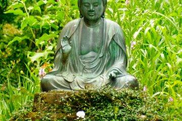 Hidden Kamakura 1