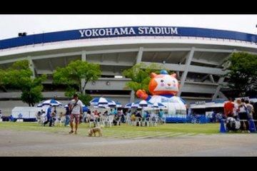 Yokohama Stadium Before a Game