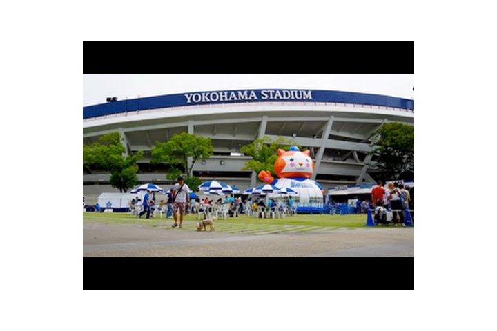 استاد يوكوهاما قبل المباراة