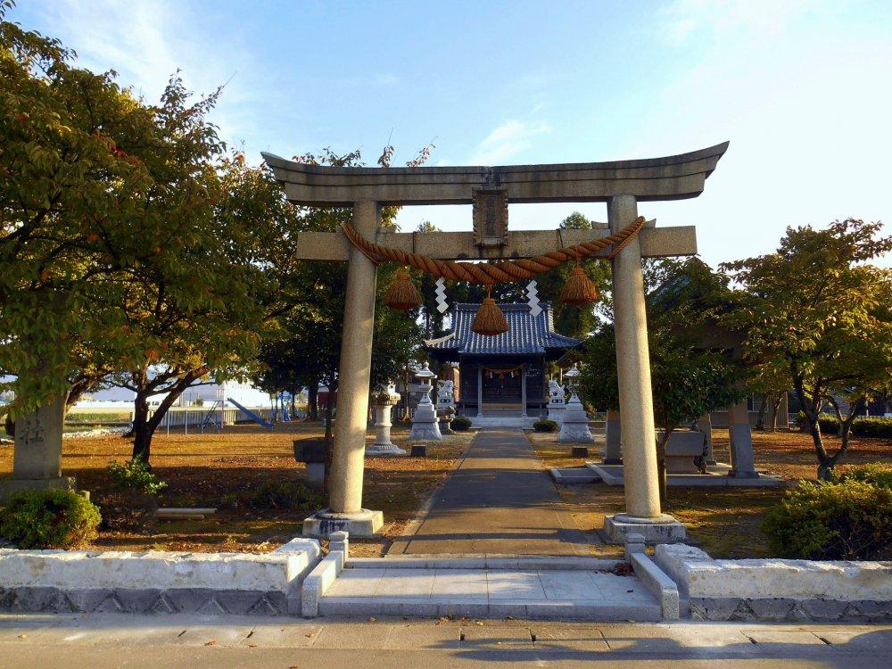 通りから眺める田んぼの中の白山神社