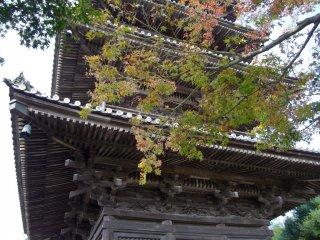 Looking upwards to Bitchu Kokubunji and outwards