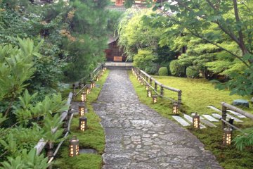 <p>This path transforms in each season</p>