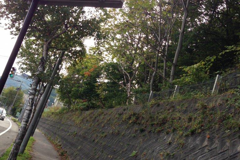 Hike Mt. Sankaku Sapporo