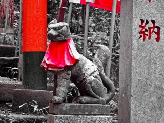 Also found in many religious places are `koma-inu` (large dogs), which are generally kept inside the inner shrine so as not to be visible to the public