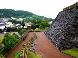 You can see the terraced vineyards on Mount Atago, and just make out one of the pagodas at Chozen-ji