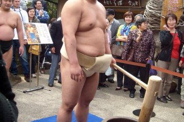 Sumo fighter Okinoumi pounding rice into mochi rice cake