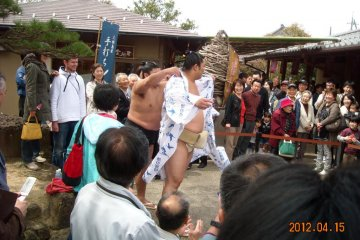 Sumo fighter Okinoumi at Yuushien Japanese Garden