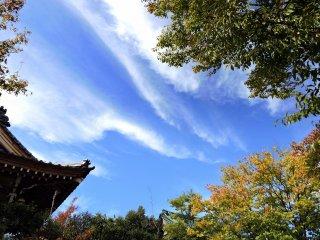 頭上には初秋の美しい青空が広がる
