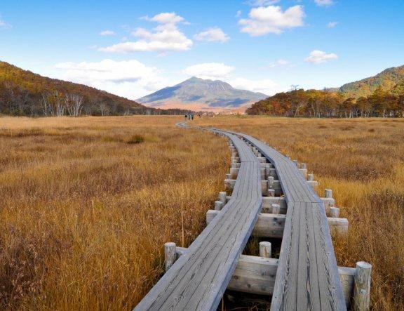 Warna-warni Musim Gugur di Ozegahara