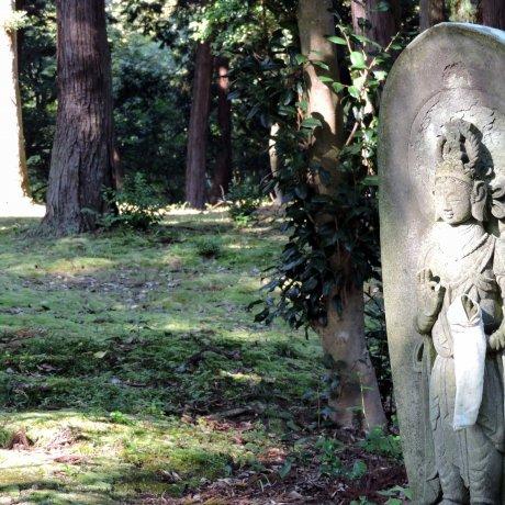 33 Kannon Statues at Taicho-ji