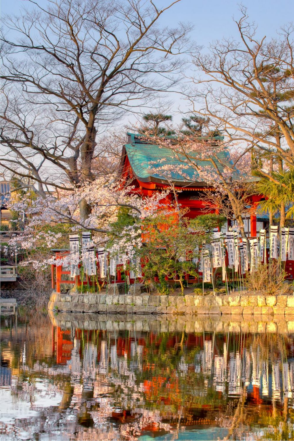 This too is Genpei-ike pond. (right side)