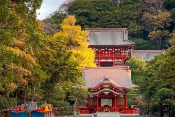 See you at Tsurugaoka Hachiman-gu Shrine.