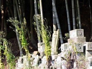 Cemetery of broken jizo statues beside the bamboo grove which surrounds Taicho-ji Temple