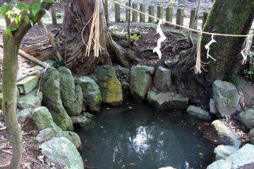 내가 아는 한, 연못의 물은 깨끗해 않아...하지만 타이코는 1332년 전에 이 물을 사용했으니까, 그때는 분명했을 거야!