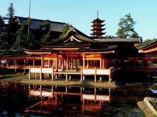 Mặt trời lặn chiếu sáng lên đền Itsukushima