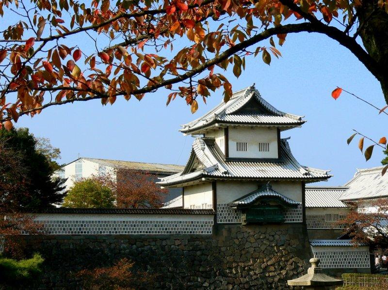 <p>An overhanging sakura branch frames the view</p>