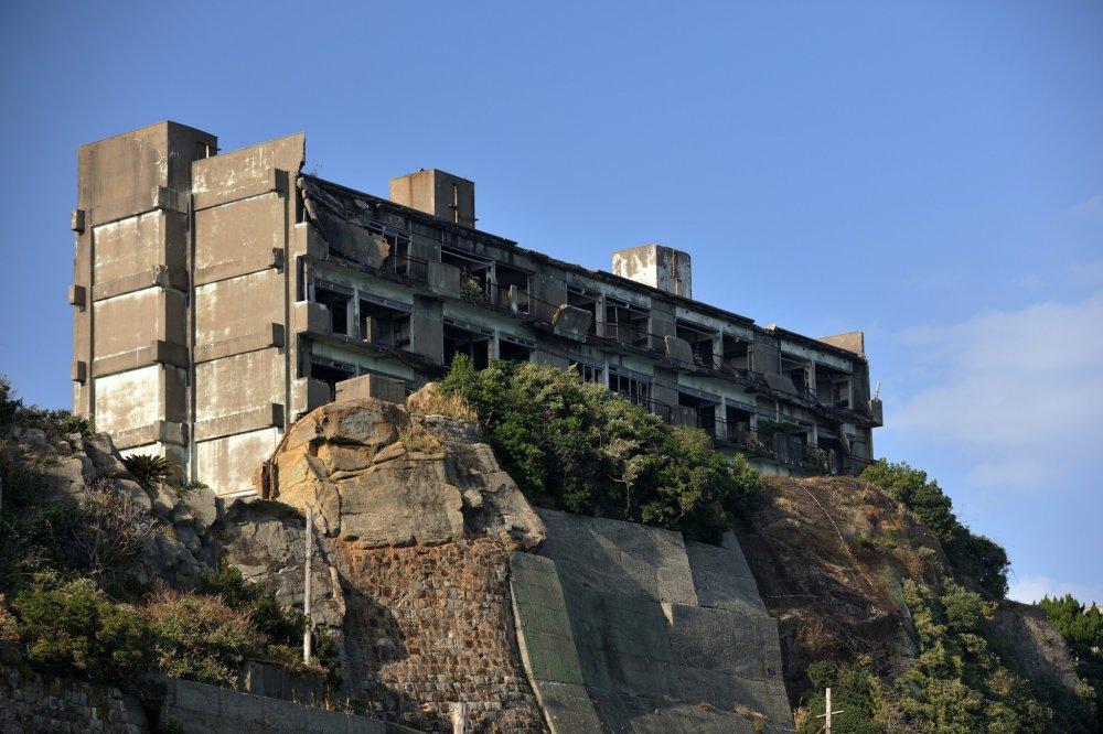一番の高台から見おろしている3号棟のアパート あちこちに根付いたアロエの花が咲いている
