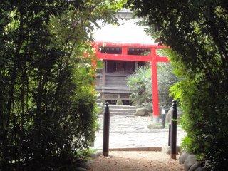Cổng Torii có thể được nhìn thấy khi bạn vào ngõ Rinno-ji