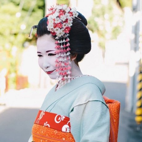 Kyoto in Video
