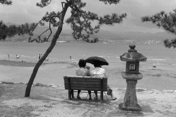 Miyajima in black and white