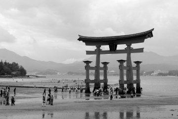 <p>The tourist magnet</p>