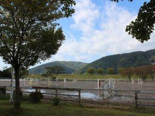 競技場。昨夜来の雨で馬場は少しぬかるんでいた