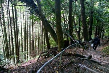 เส้นทางเดินป่า คุรามะ–คิบุเนะ