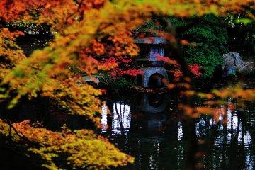 <p>The garden pond of Nanzen-in; the annex of Nanzenji Temple, where the original Nanzenji was first built</p>