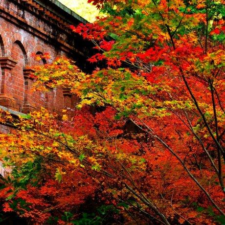Miyabi: Subtle Beauty of Nanzenji