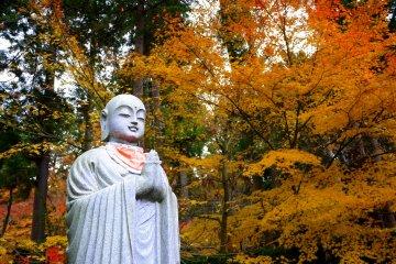 Autumn Color at Kongorinji