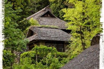 <p>Мне всегда были интересны крыши.</p>
