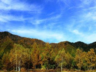 秋らしい高い空、時折見せる風の芸術 筋雲