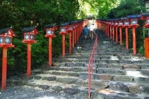 บันไดหินโบราณพร้อมเสาโคมไฟแดงแบบญี่ปุ่นที่เรียงรายสองข้างบันไดไปจนถึงด้านบนศาลเจ้าคิบุเนะนั้น เป็นมุมสวยๆ ยอดนิยมที่ทุกคนนิยมมาถ่ายรูป และเป็นมุมเอกลักษณ์ของศาลเจ้าคิบุเนะอันมีชื่อเสียง