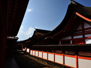 Chigi and Katsuogi (Japanese typical shrine roof ornamentation) are not used on the roofs of Itsukushima Shrine. The cypress bark-thatched roofs of this shrine are famous for their beauty