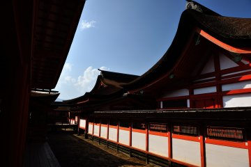 <p>Chigi and Katsuogi (Japanese typical shrine roof ornamentation) are not used on the roofs of Itsukushima Shrine. The cypress bark-thatched roofs of this shrine are famous for their beauty</p>