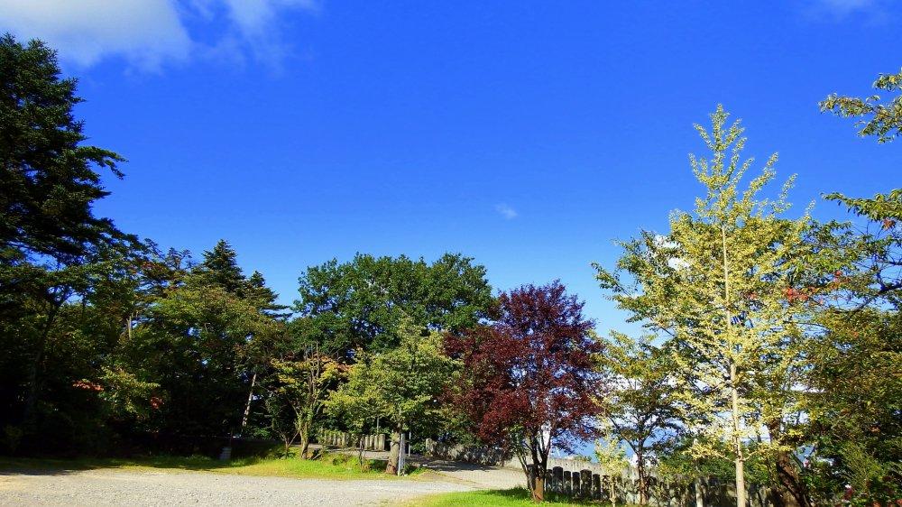 Di halaman kuil, pepohonan berubah warna di bawah langit musim gugur yang biru