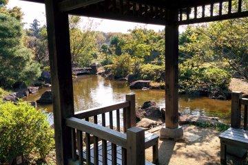 <p>Japanese garden</p>