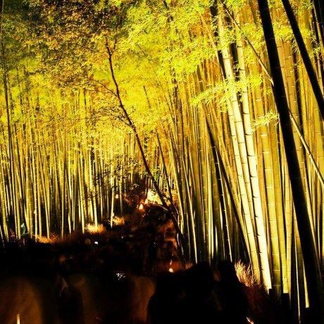 Jalan Lentera di Arashiyama Kyoto