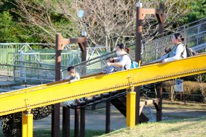 Parents can enjoy the jungle gym with their small children, too!