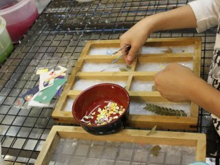 和紙の紙漉き体験中。押し葉入の栞を作っている