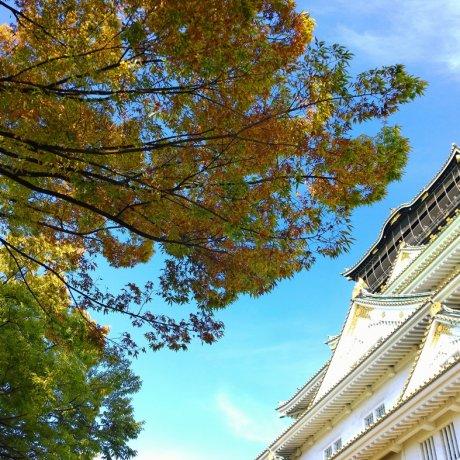 เปิดตำนานปราสาทโอซาก้า ( 大阪城)